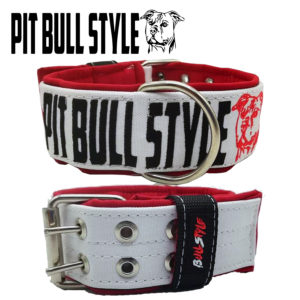 COLLAR PITBULLSTYLE